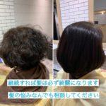 継続すれば必ず髪は綺麗になります!縮毛矯正、ホットミルク、ヘナとインディゴによるハーブカラーで髪質改善。自由が丘、奥沢でヘナ、髪質改善はtecco.にお任せ下さい!