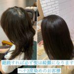 【ヘナ2度染め!!継続すれば必ず髪は綺麗になります】自由が丘のヘナ髪質改善特化サロンtecco.
